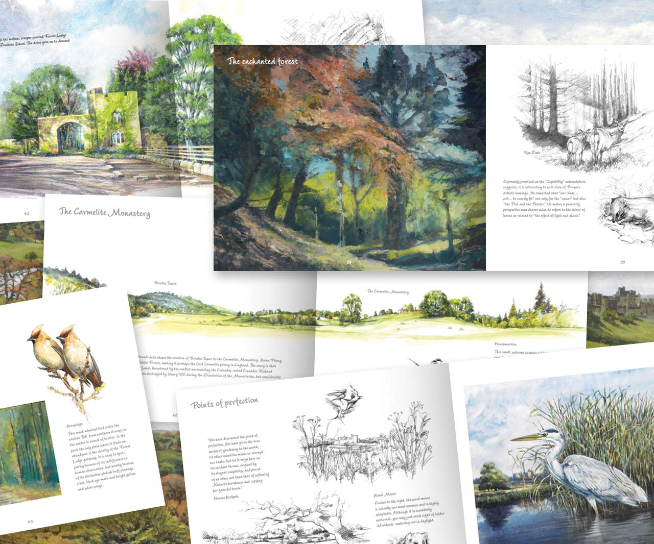 'Alnwick Parks' inner pages
